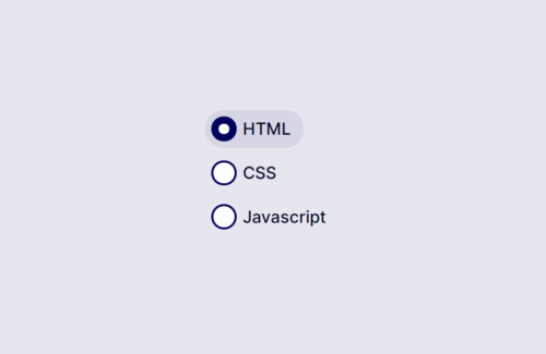 The Best 30+ Radio Button CSS style Examples – GSCODE