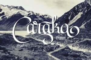 Read more about the article Caraka