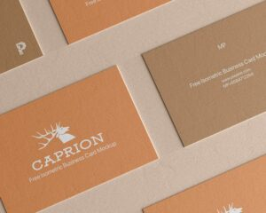 Read more about the article Free Vertical Business Card Mockup