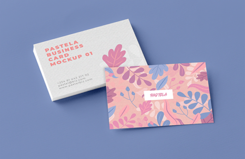 Business Card Mockup Collection V1 Freebie